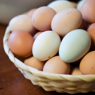 The Incredible Egg | Recent rationing and buying local