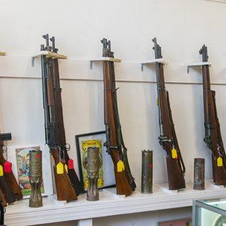 cs-arms-1-small