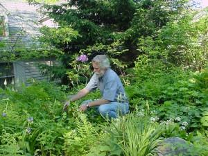 Wildflowers at Wintergreen: Spring Symposium Celebrates the Season