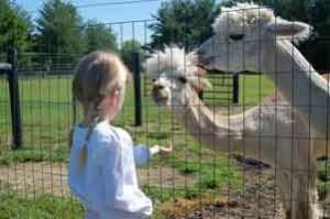 Loudoun Farm Tour