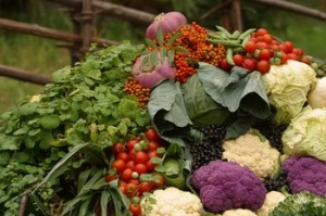 It's That Time Again — Join Your Local CSA!