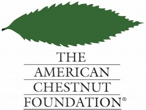 The Virginia Chapter of The American Chestnut Foundation to Host 3rd Chestnut Gala