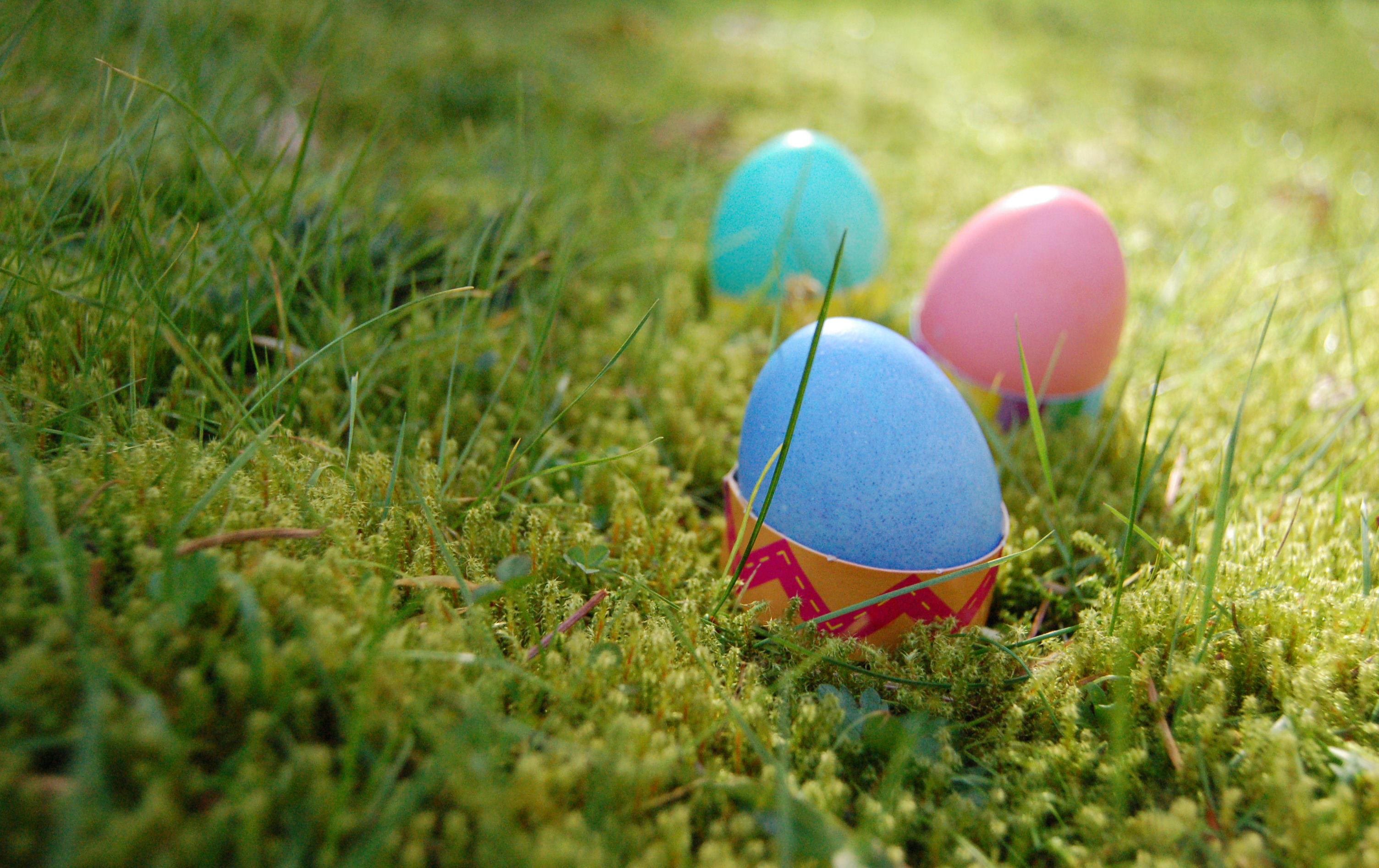 Easter Egg Hunt and music on the patio at DuCard — this weekend!