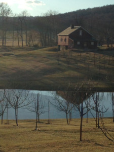 The Piedmont: Not just for wineries anymore!