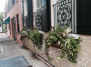 Travel blog: Visiting Charleston
