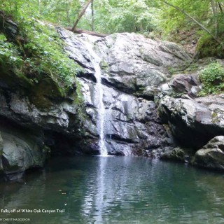 Old Fashioned Swimming Holes in the Piedmont