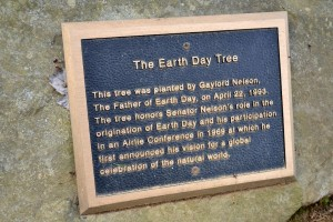 The Earth Day Tree