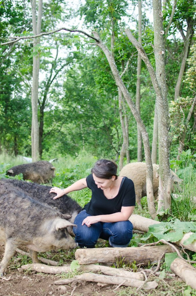 Molly scratching and loving on some of their Mangalitsa pigs