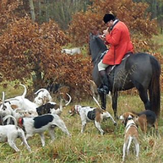 AH, THE JOY OF A HUNTING MORN! The Virginia Piedmont is at the heart of foxhunting in America