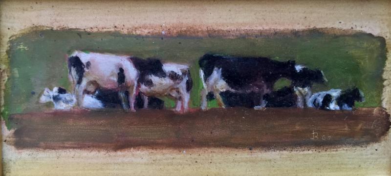 jack-boul-cows