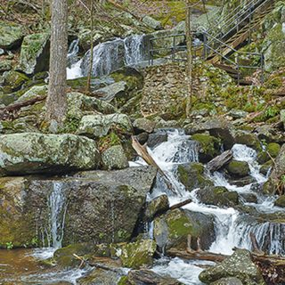 Great Autumn Hikes in the Piedmont